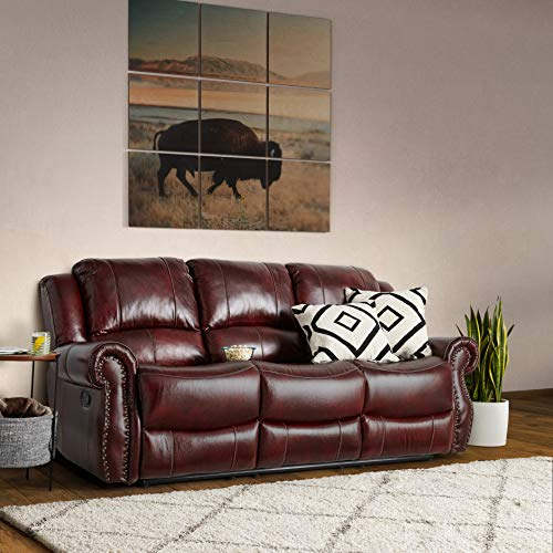 Cambridge Telluride Leather Double Reclining Sofa, Brown