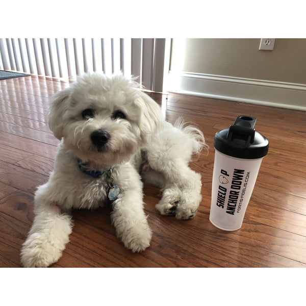 Shield Up, Anchor Down Blender Bottle