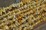 "Citrine Chip Beads - 5-8mm - 15"" Strand"