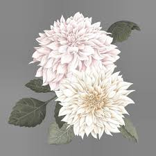 Stickstay Wallsticker Dusty Pink Dahlias til barnerom