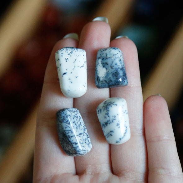 Dendrite Opal Tumble Tumbled Stones | Crystal Shop Australia, Afterpay and zipPay available