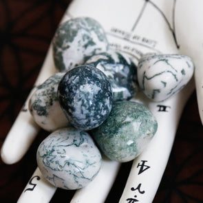 Tree Agate Tumbles (Smaller)