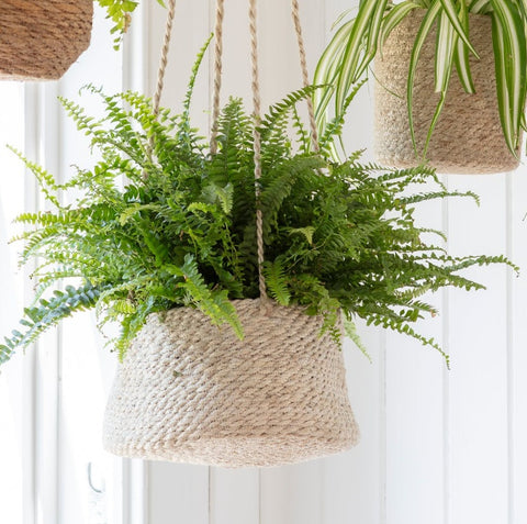 Jute Hanging Plant Pot - Tapered Sides