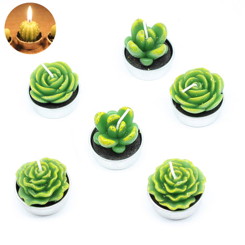 Mini Cactus Candle Set ( 6 pcs )