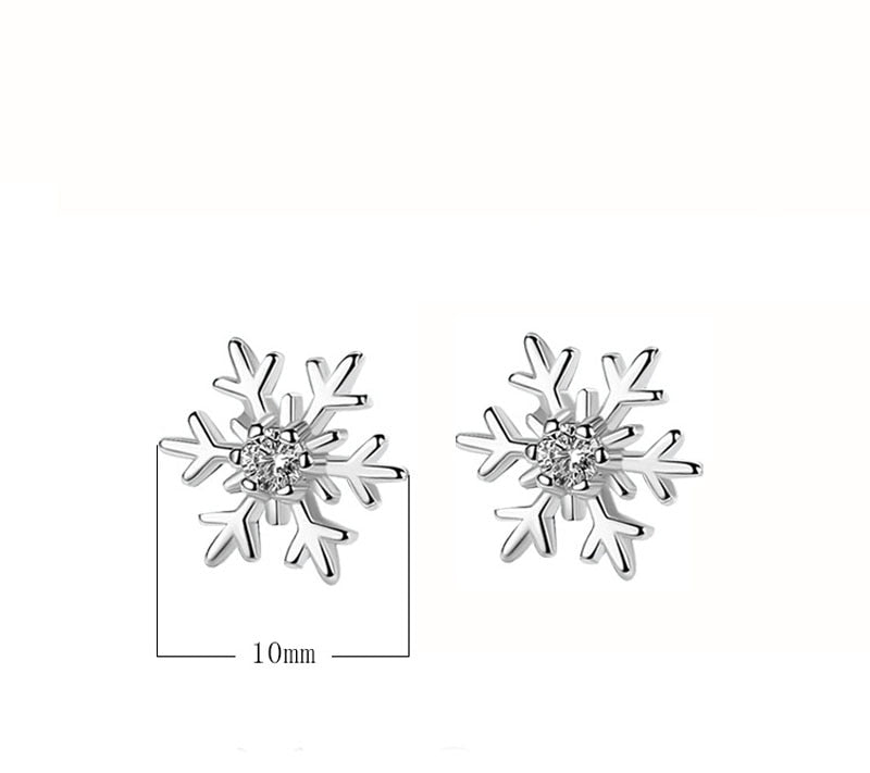 Stylish Silver Plated Snowflake Earrings