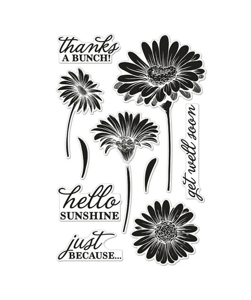 Hello Sunshine Daisies Clear Stamp Set