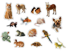 Pets: Photographic Realistic Stickers