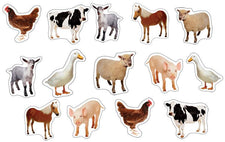 Farm Animals: Photographic Realistic Stickers