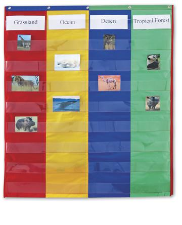 2 & 4-Column Double-Sided Pocket Chart