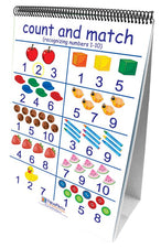 Number Sense 10 Double Sided Curriculum Mastery Flip Charts