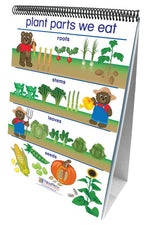 All About Plants Curriculum Mastery® Flip Chart Set - Early Childhood