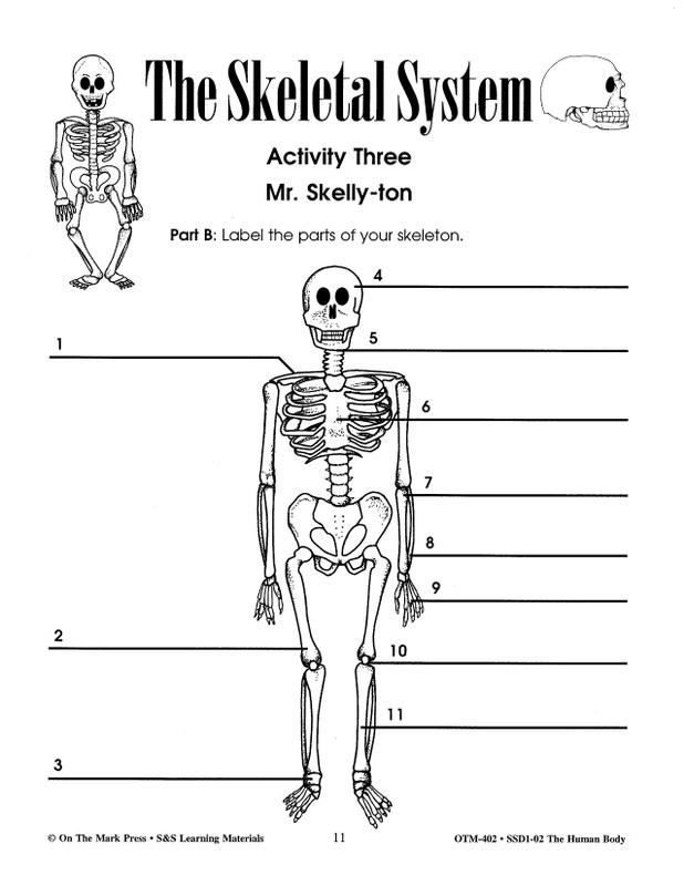 The Human Body Gr 4-6 | OTM402