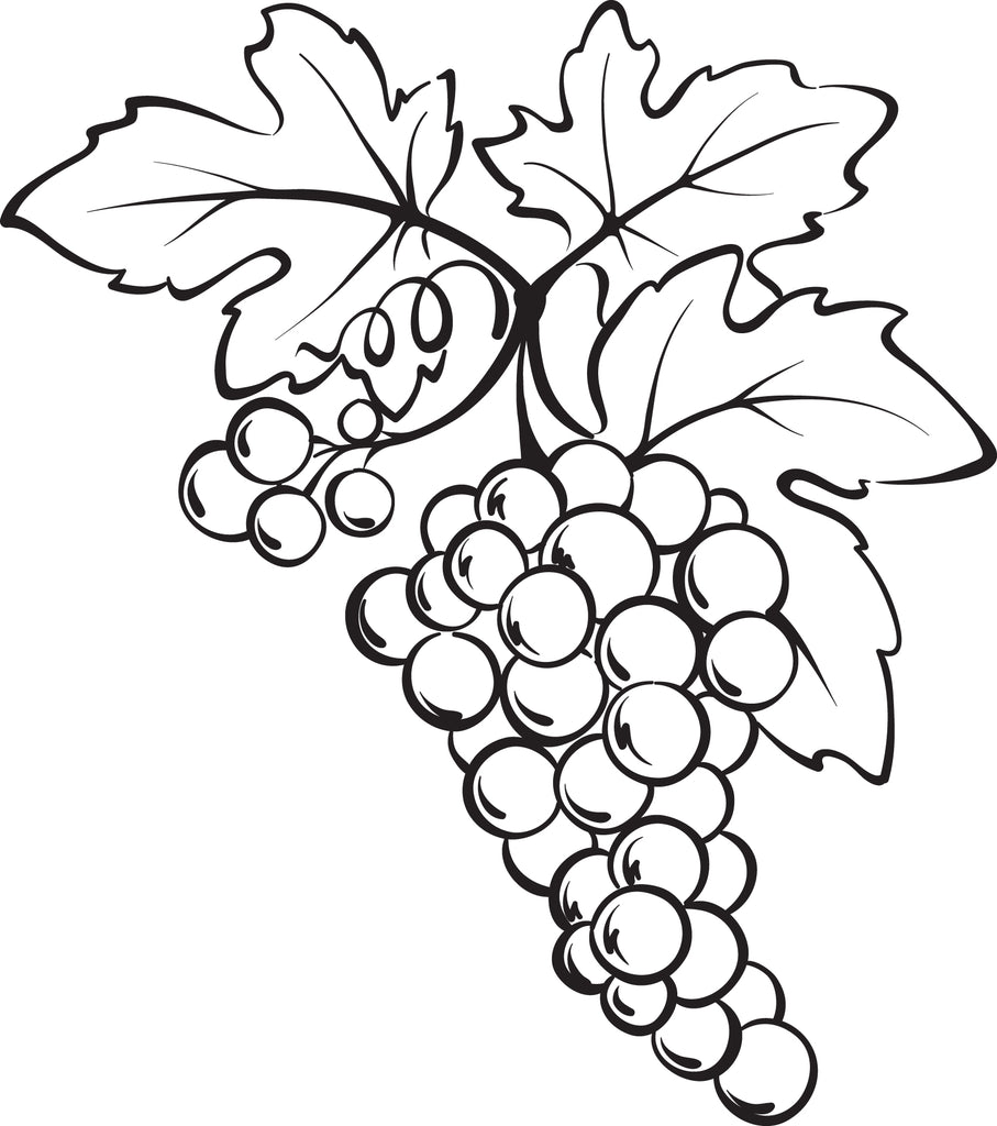 Free, Printable Bunch of Grapes Coloring Page – SupplyMe