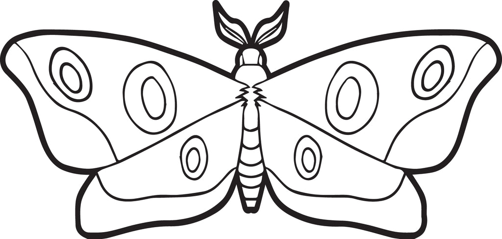 FREE Printable Moth Coloring Page for Kids
