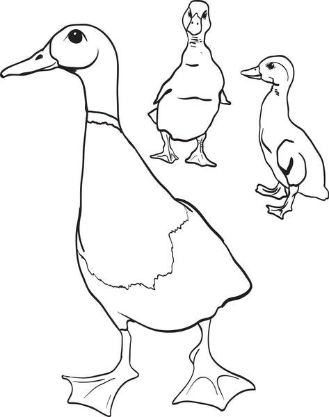 Free, Printable Mother Duck With Little Ducklings Coloring ...