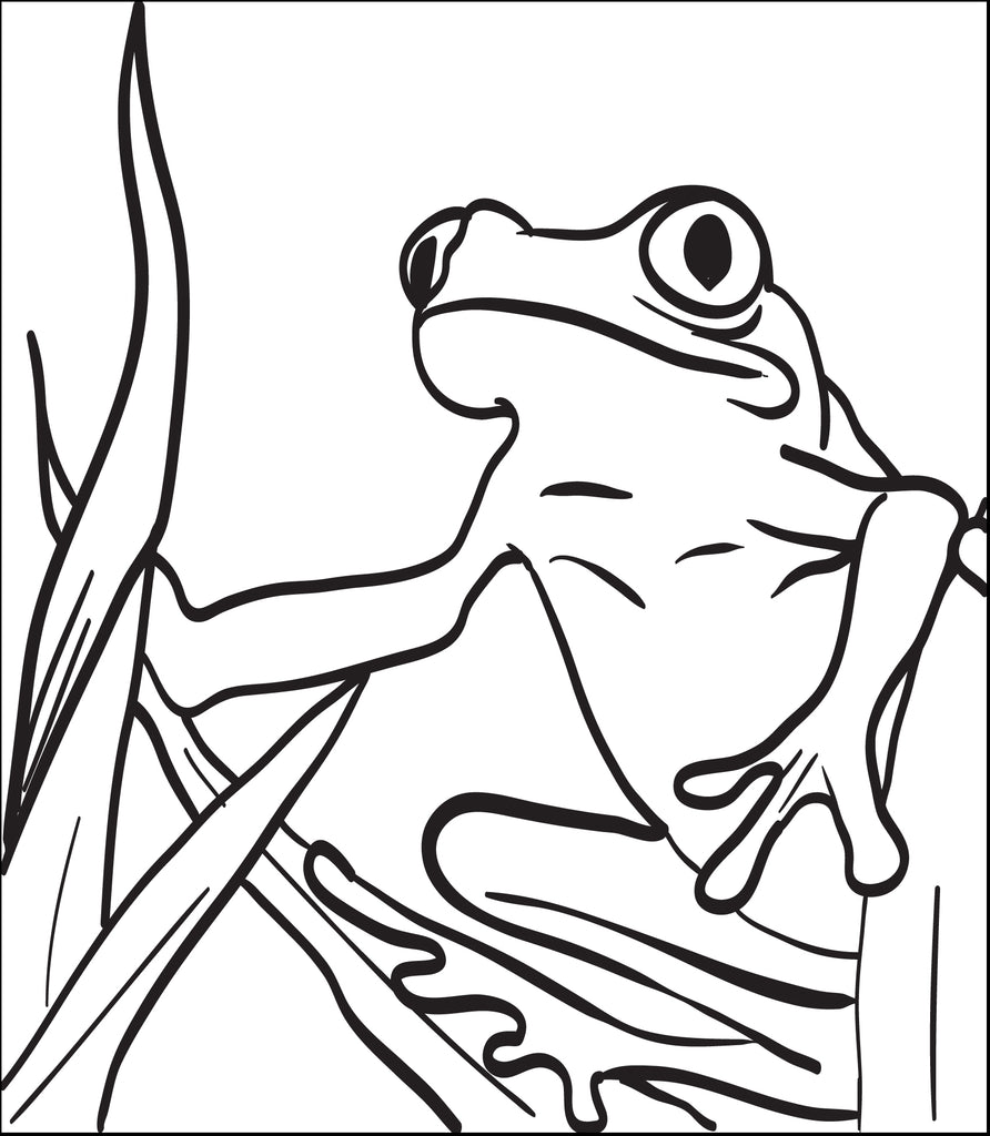 Frog Coloring Page #3
