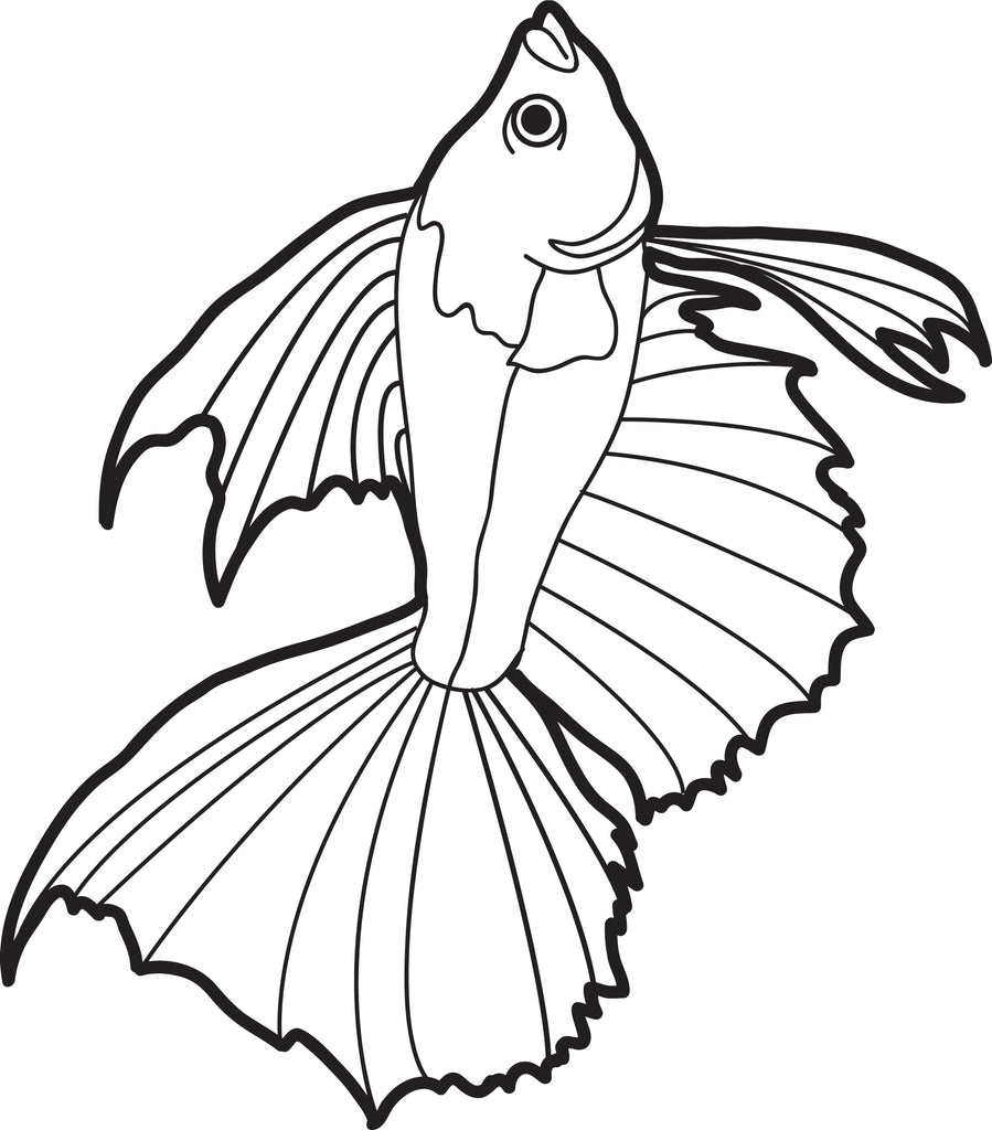 Free Printable Realistic Fish Coloring Page for Kids 2 SupplyMe