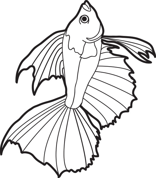 FREE Printable Realistic Fish Coloring Page for Kids #2