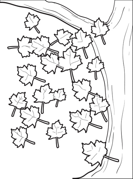 Free, Printable Fall Leaves Coloring Page for Kids