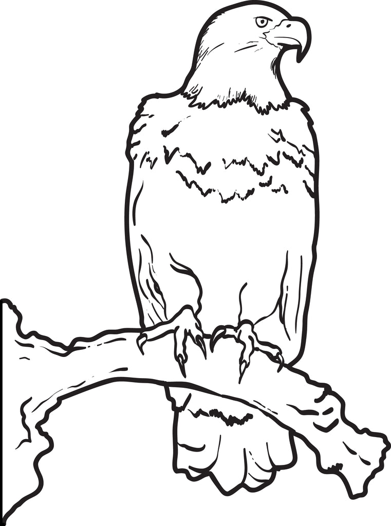 - Printable Bald Eagle Coloring Page For Kids – SupplyMe