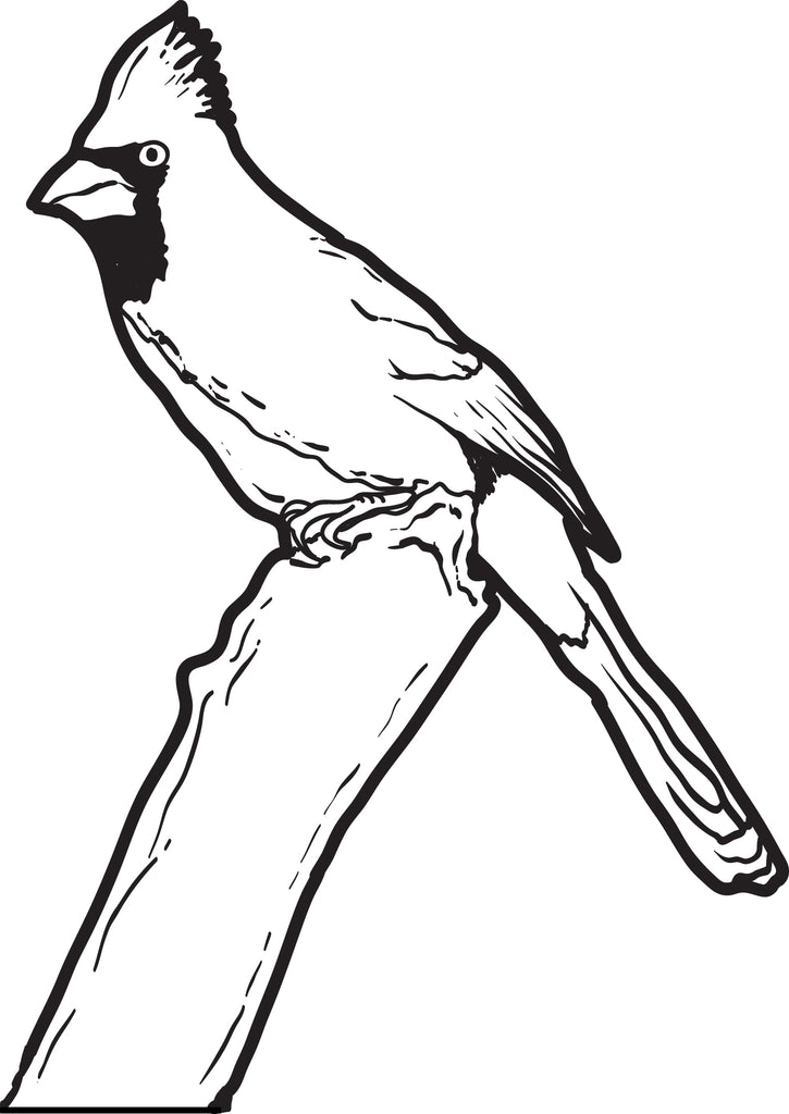 FREE Printable Cardinal Coloring Page for Kids