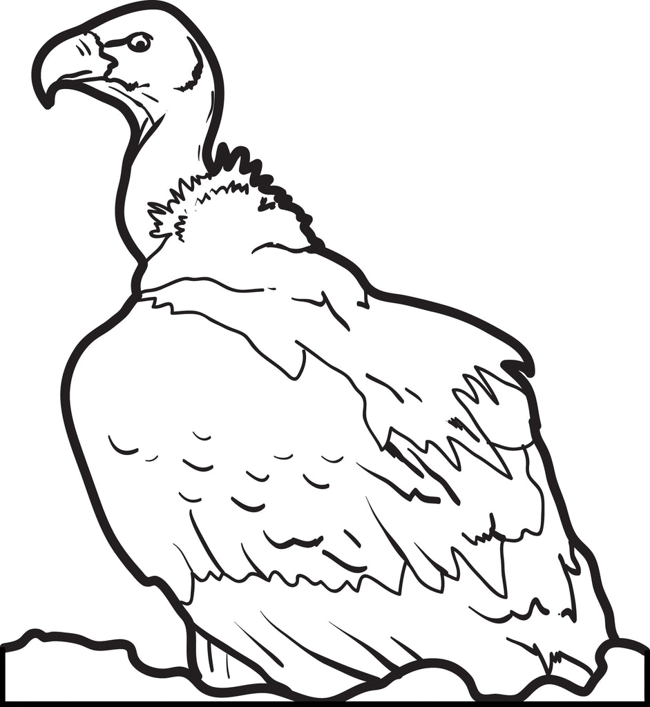 FREE Printable Vulture Coloring Page for Kids #2 – SupplyMe