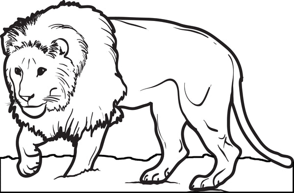 free coloring pages of lions - photo#23