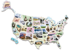 WonderFoam® Giant USA Photo Floor Puzzle Map