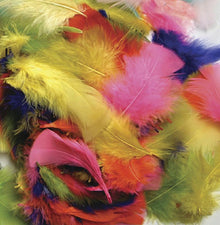 Feathers - Bright Hues - 125 Pieces