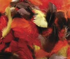 Feathers - Fall Colors - 125 Pieces