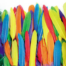Duck Quill Feathers - Bright Color Assortments