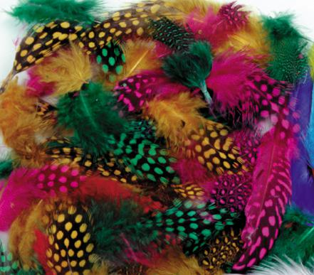 Spotted Feathers - Multi Colored Assortment