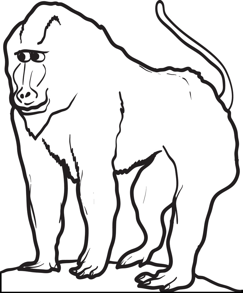 Elegant Baboon Coloring Page
