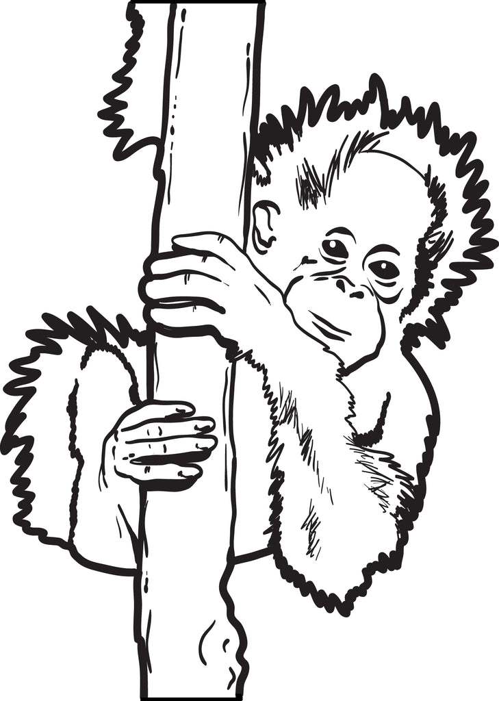 Free, Printable Baby Orangutan Coloring Page for Kids