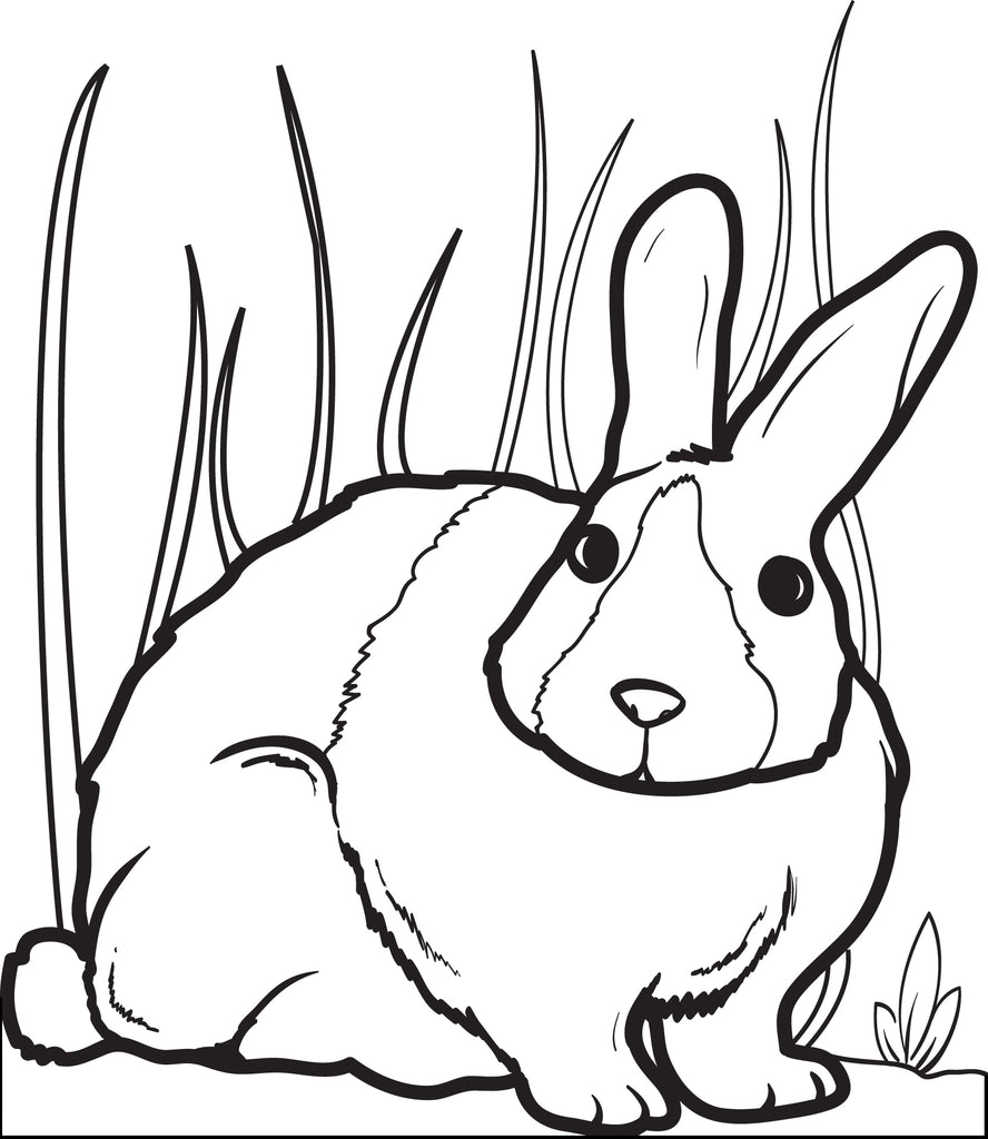 Printable Bunny Rabbit Coloring Page for Kids #2 - SupplyMe