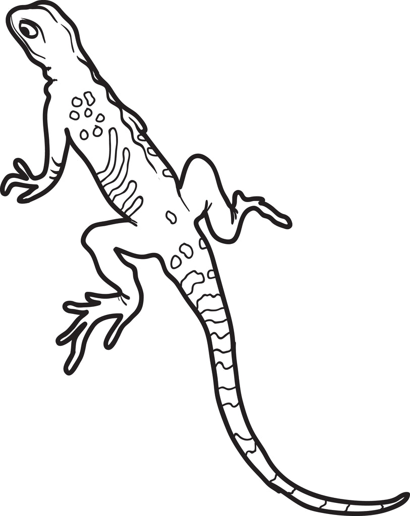 FREE Printable Lizard Coloring Page for Kids - SupplyMe