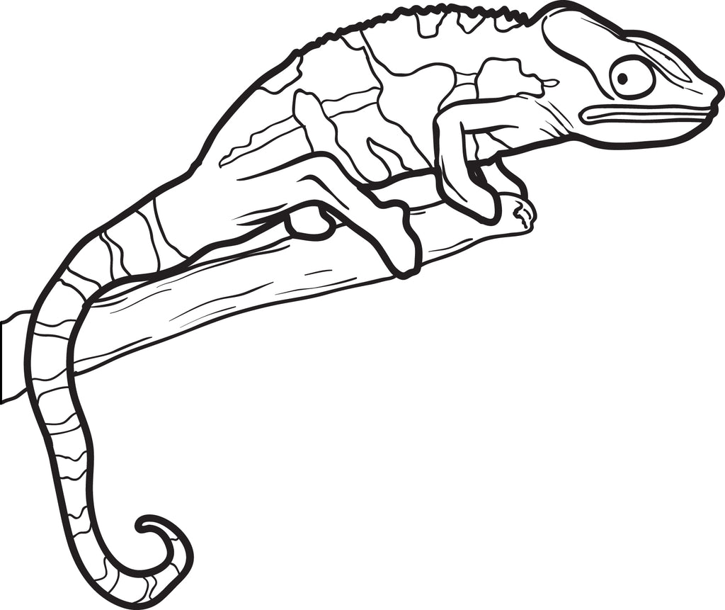 Printable Lizard Coloring Page for Kids #2 - SupplyMe