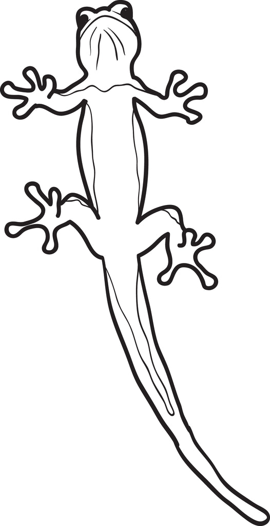 Lizard Coloring Page #4