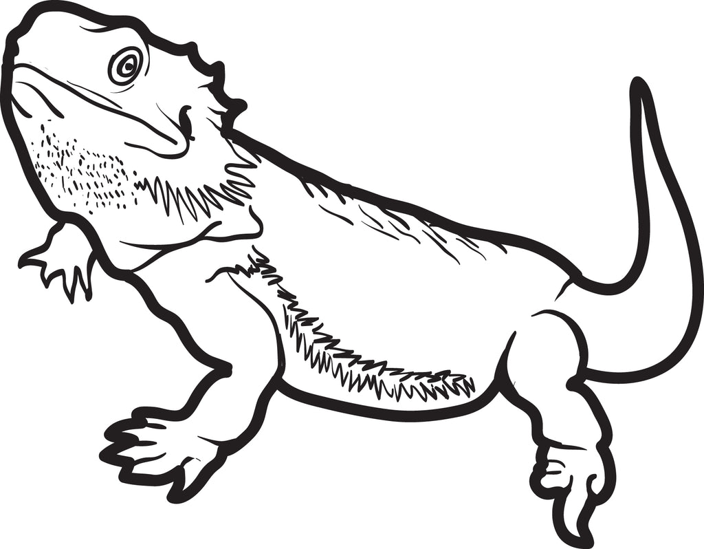 Lizard Coloring Page #5