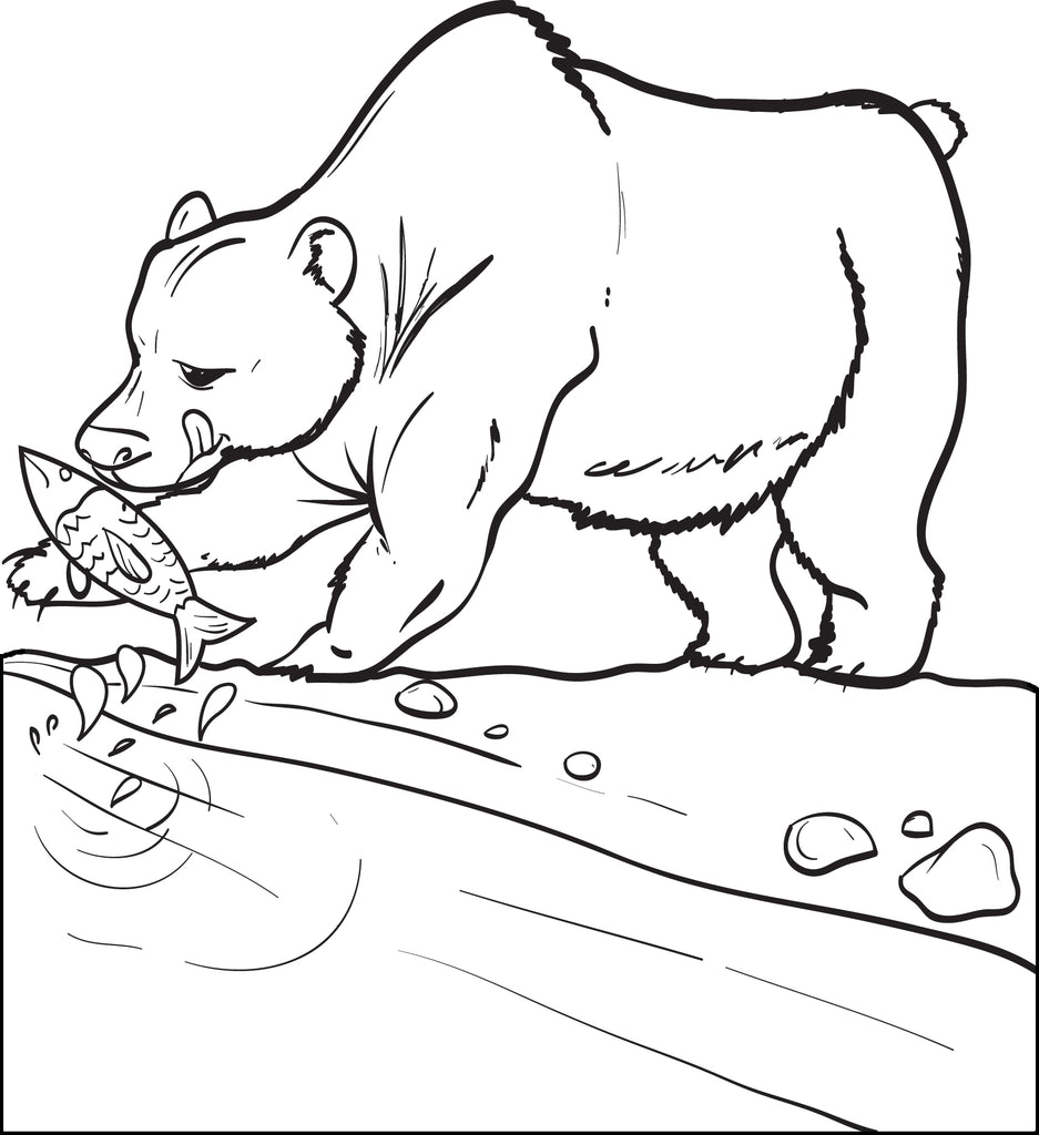 Bear Catching a Fish Coloring Page