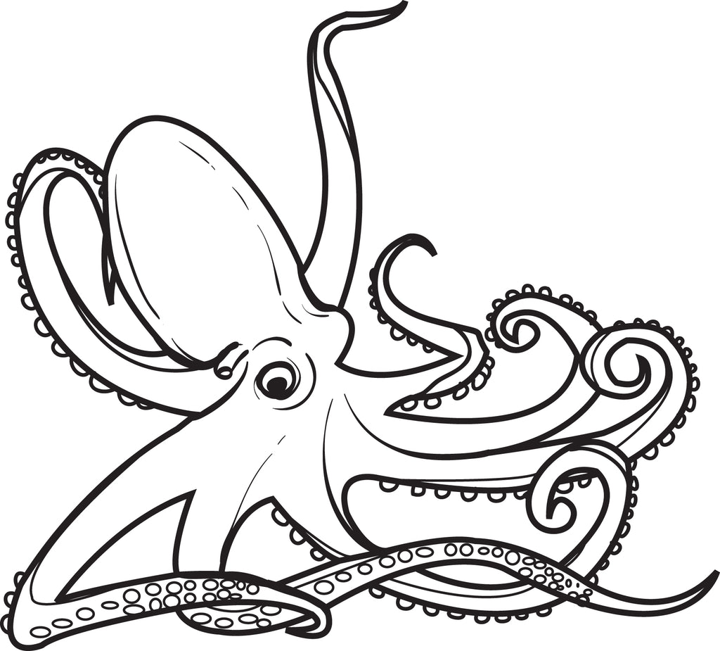 photo about Printable Octopus identified as No cost Printable Octopus Coloring Webpage for Youngsters #2 SupplyMe