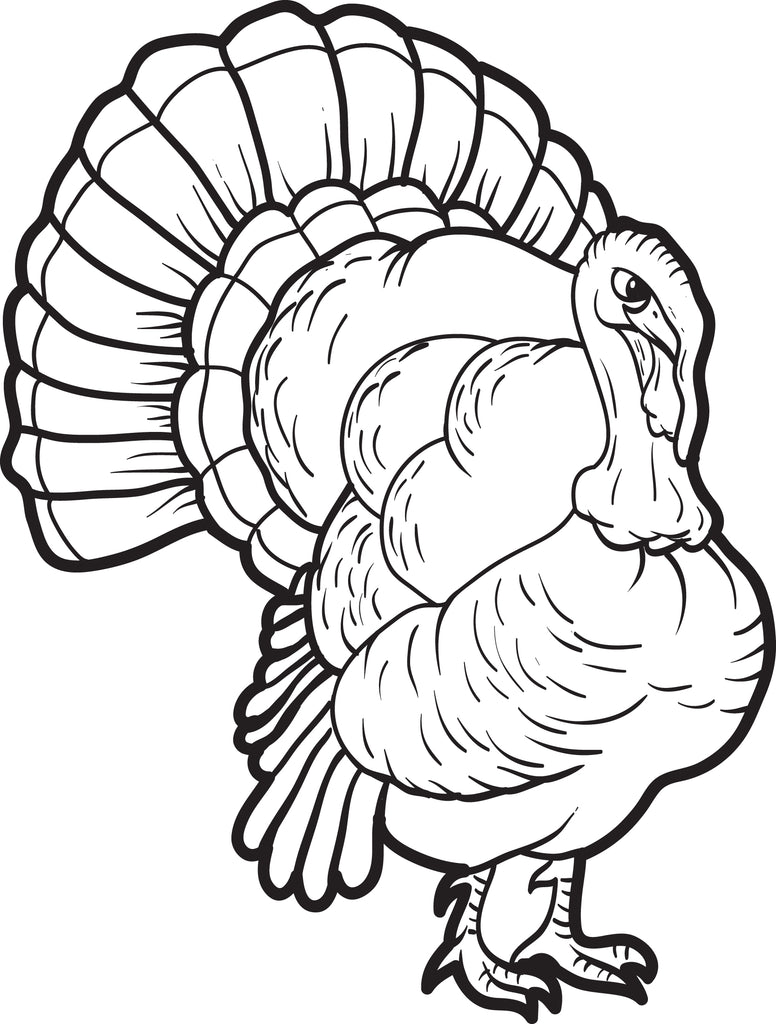 FREE Printable Turkey Coloring Page for Kids #13 - SupplyMe