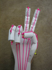 Engineering + Physiology - Building an Articulated Hand