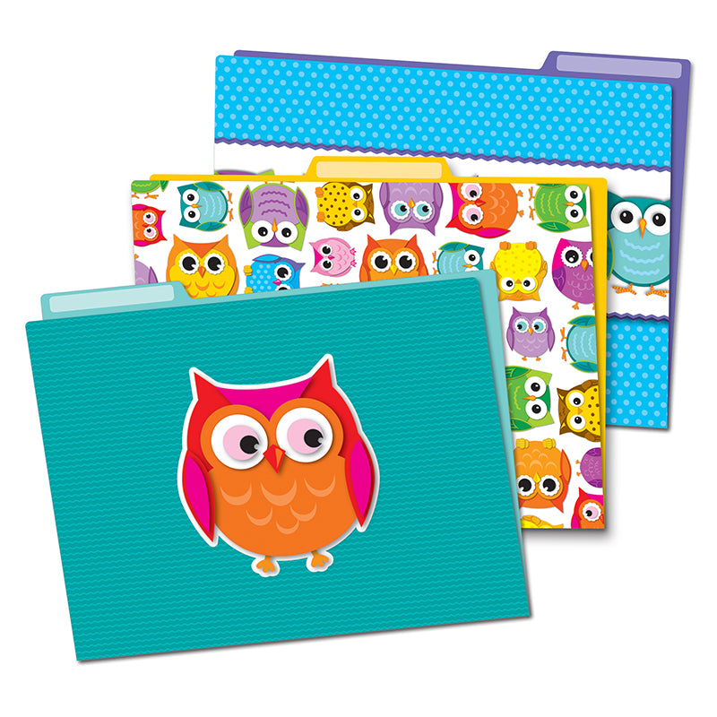 Colorful Owls File Folders