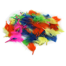 Turkey Feathers, Hot Colors