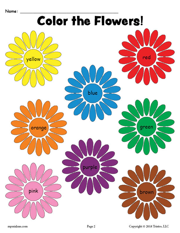 image about Printable Flowers to Color identify Totally free Printable Flower Colour Terms Worksheet! SupplyMe