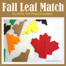 DIY Fall Leaf Match Activity for Preschoolers!