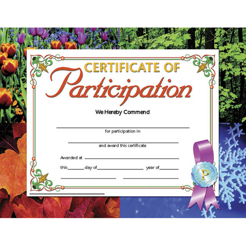 Hayes School Publishing Certificate of Participation 1