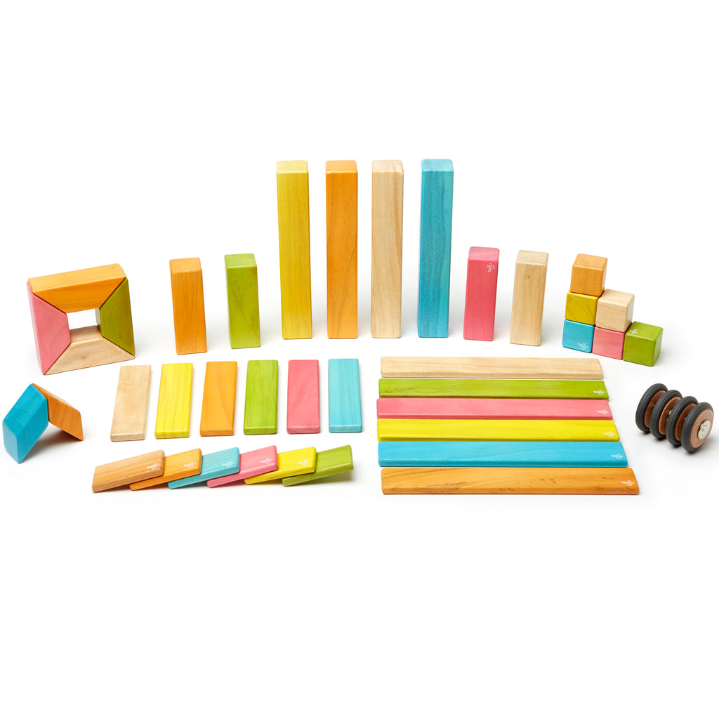 Tegu 42-Piece Set, Tegu Tints
