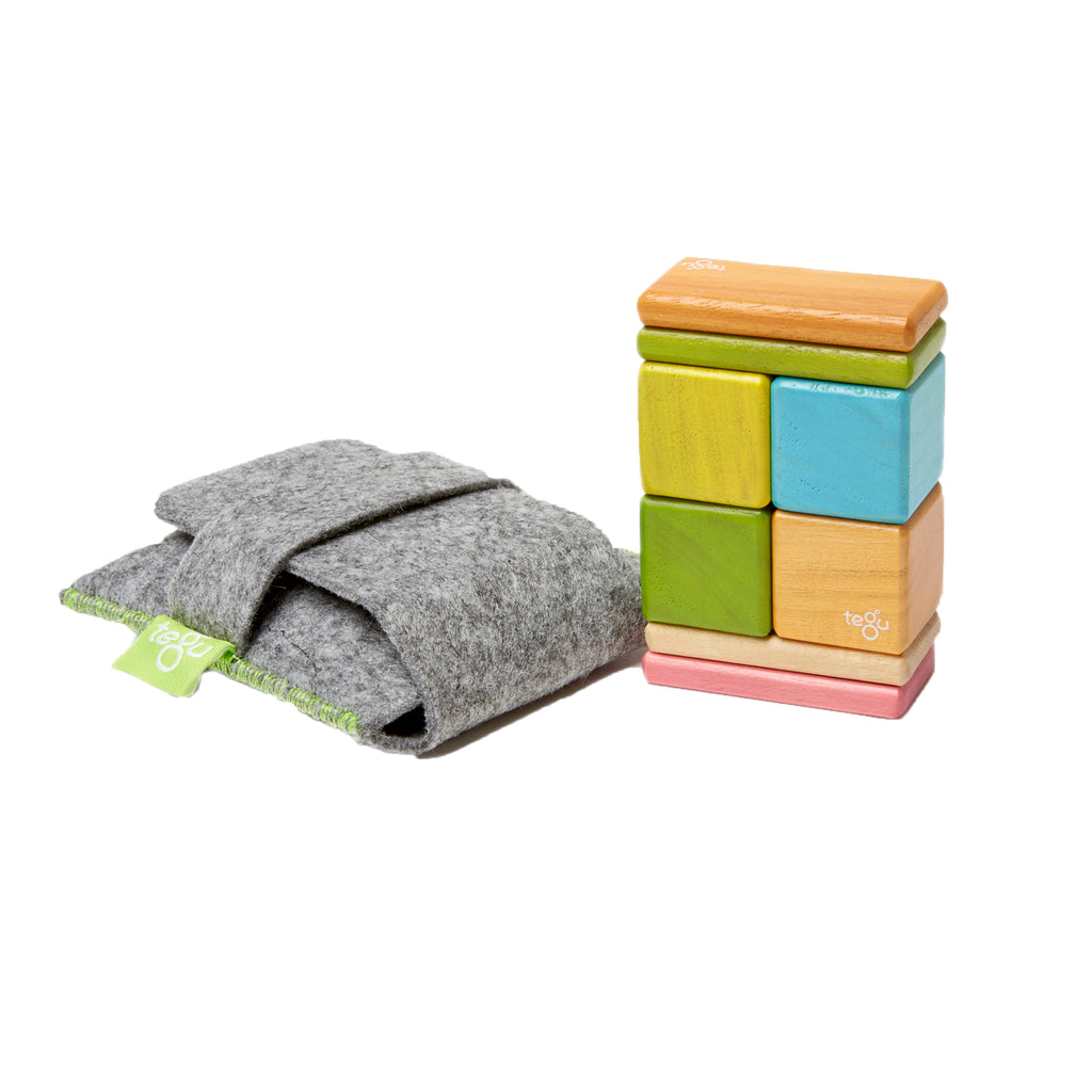 Tegu 8-Piece Pocket Pouch, Tegu Tints